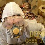 Почистване на клошарско жилище и извозване на боклук